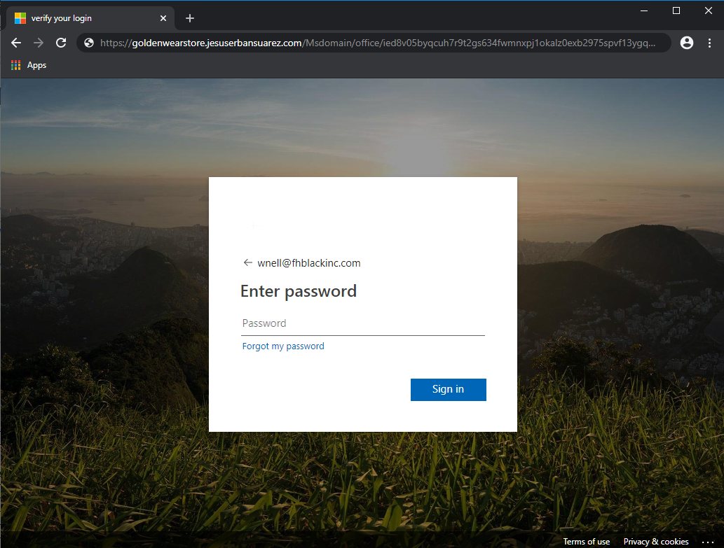 Fake Microsoft log in page